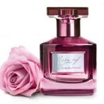 woda Rose of dreams